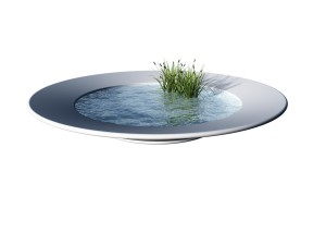 white dinner plate filled with water and reed - 3d illustration